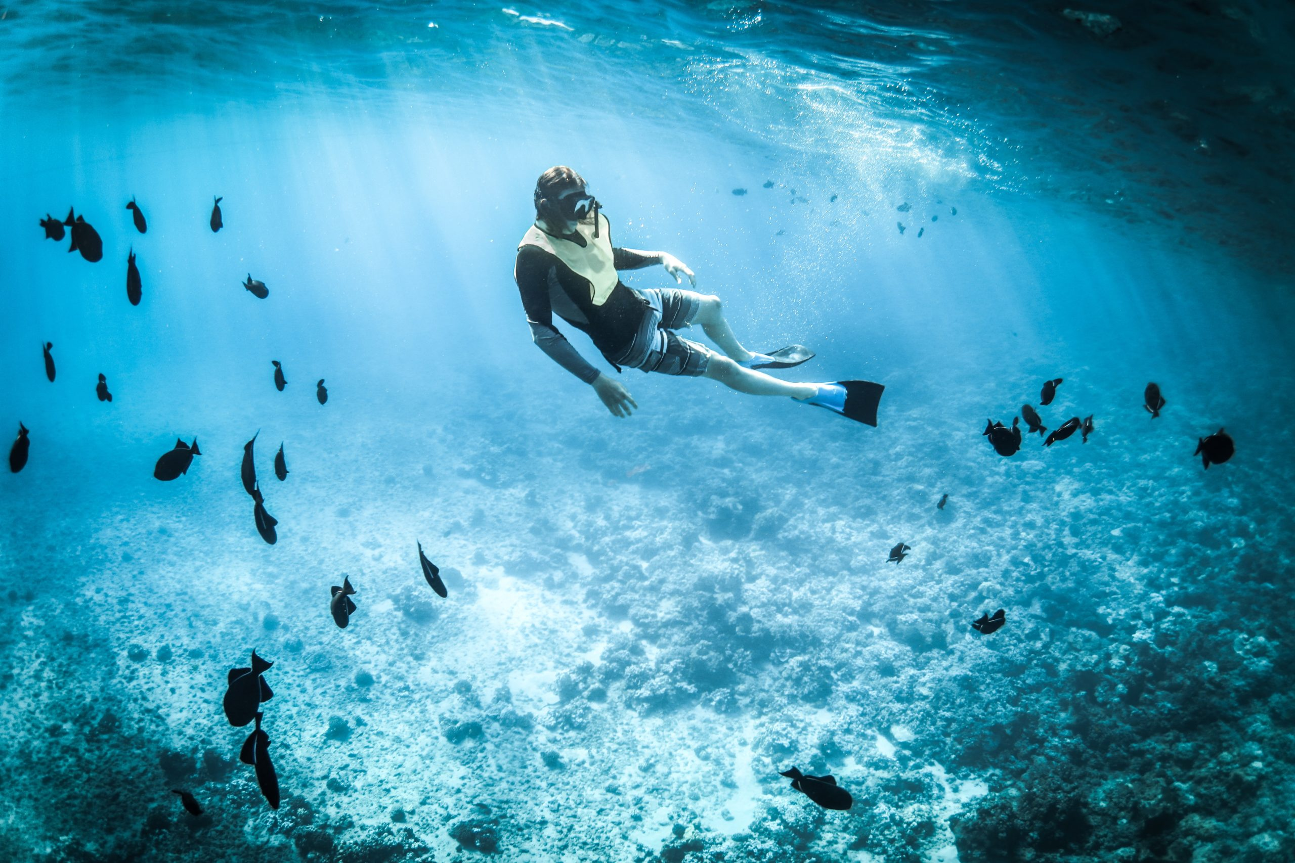 5 Things To Determine Your Deep Dive Level