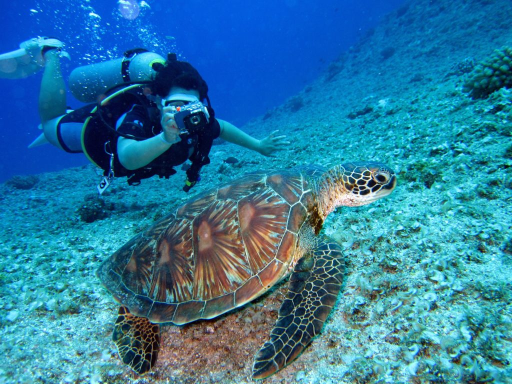 8 Important Things All Scuba Divers Must Know