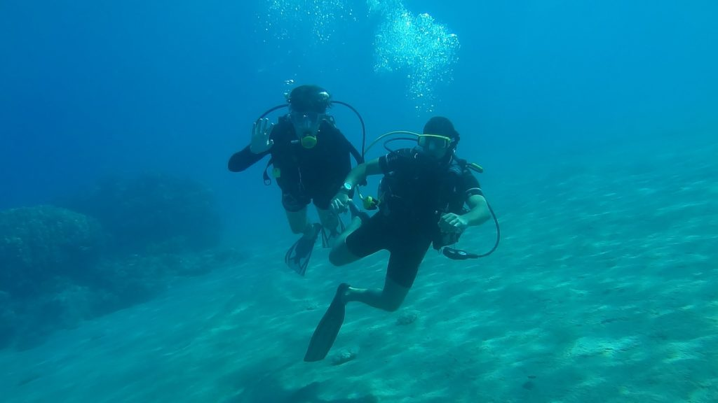 9 Diving Gear To Buy For Scuba Diving