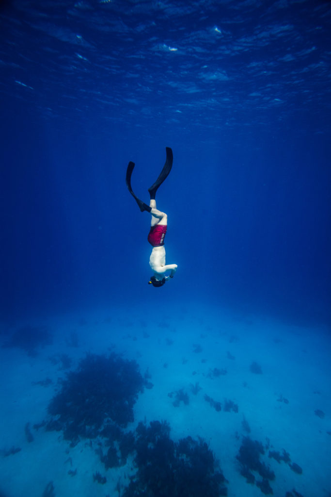 5 Important Tips For Holiday Skin Diving