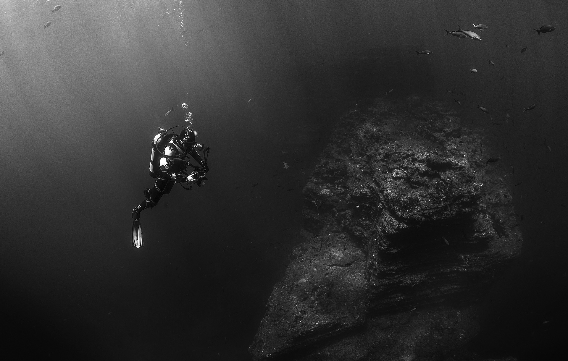 Everything You Need To Know About Deep Dive