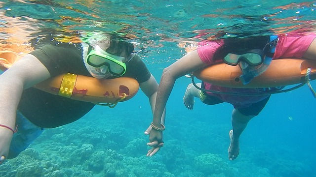 Snorkeling By Purging Or Not Purging – What To Do?