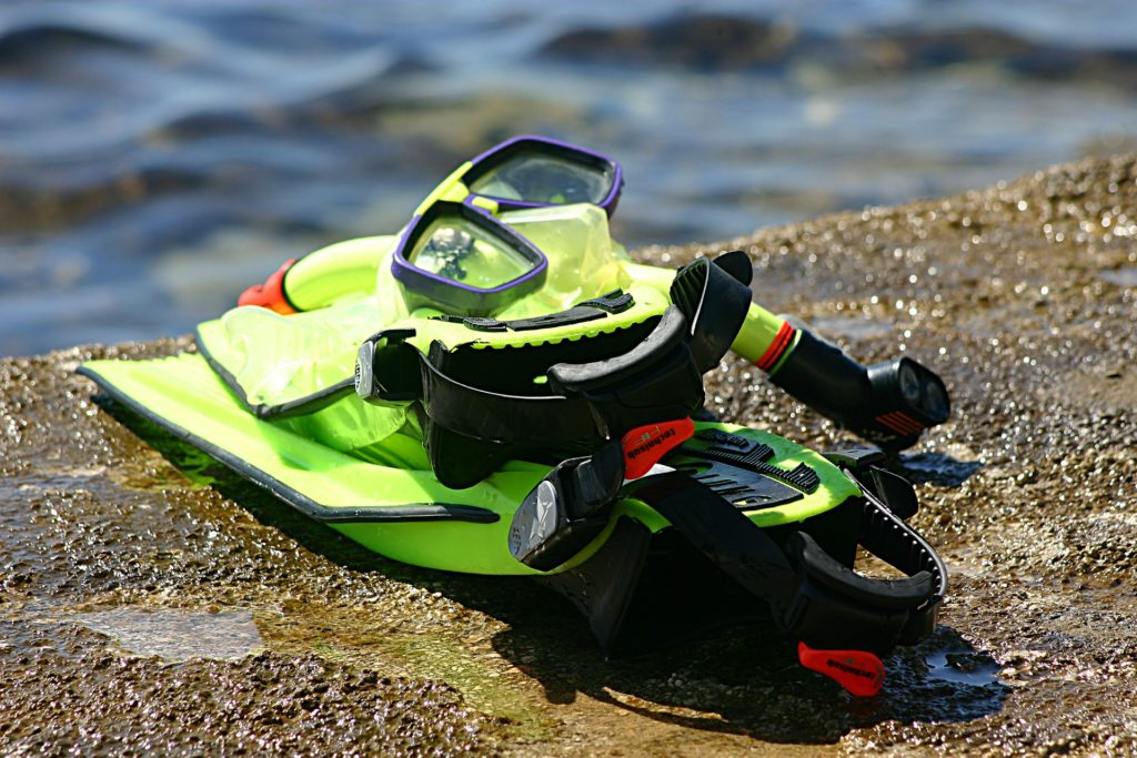 Top 5 Swimming Gear to Pack in Your Swimming Bags