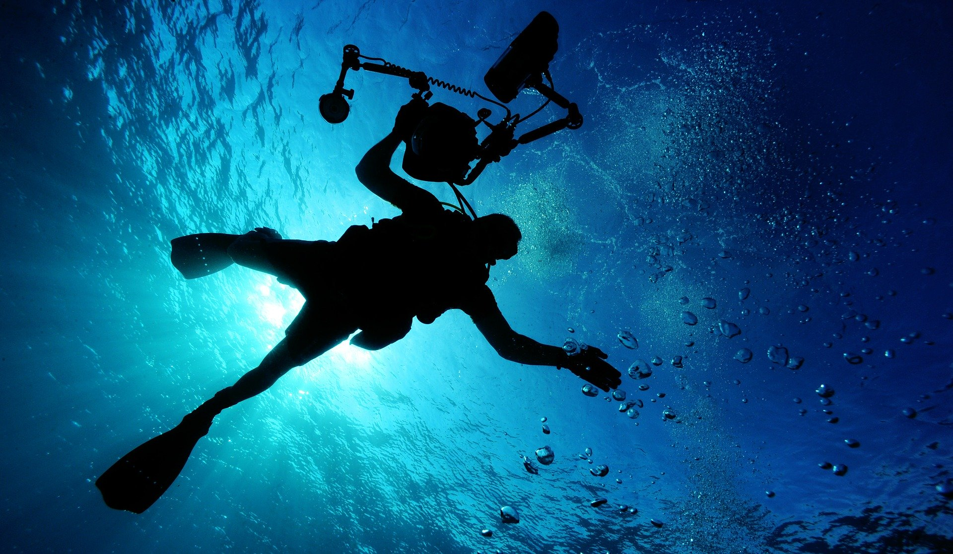 Scuba Diving Koh Tao Thailand: Everything to Know