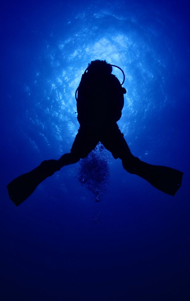Gifts For Scuba Divers And Ocean Lovers