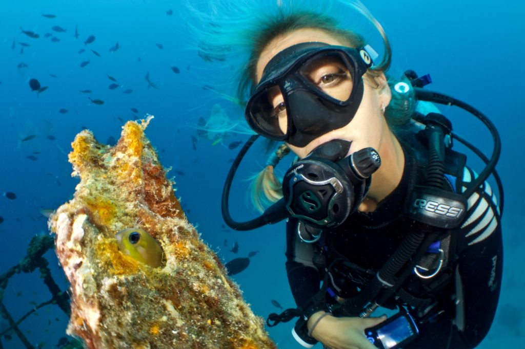 Where To Find The Best Diving Cameras